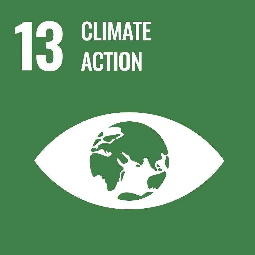 SDGs-13